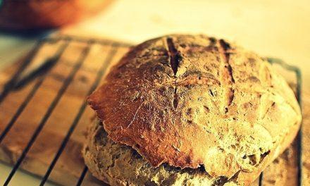 Chleb jak kamienie, kamienie jak chleb