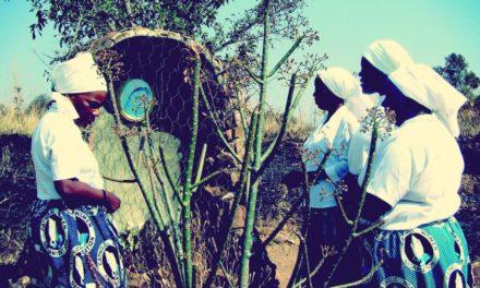Z zapisków misjonarza w Zambii