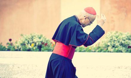 Najlepszy sposób życia – o wyzwaniach synodu