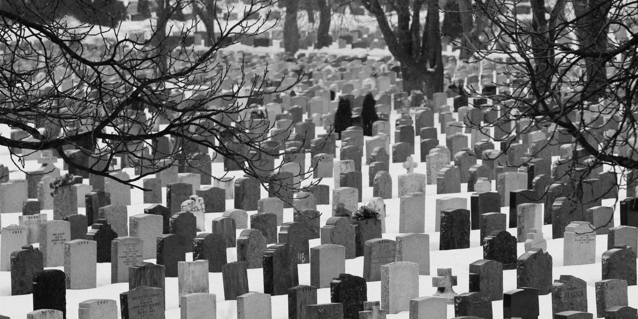 Serce jak cmentarz (kazanie)
