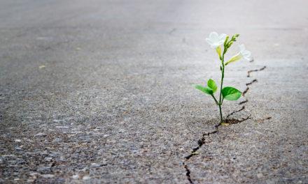 Warszawa: Na szczęście nadzieja… nadzieja na szczęście [ZAPROSZENIE]
