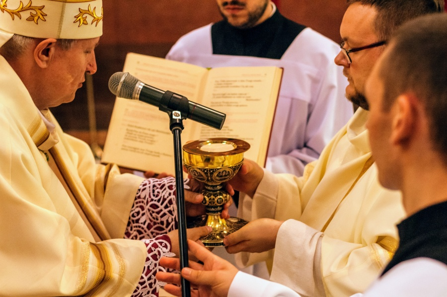 Święcenia prezbiteratu w Krakowie: wskazywać Chrystusa jak Jan Chrzciciel