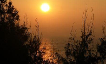 Jan Chrzciciel (4) – spełnienie
