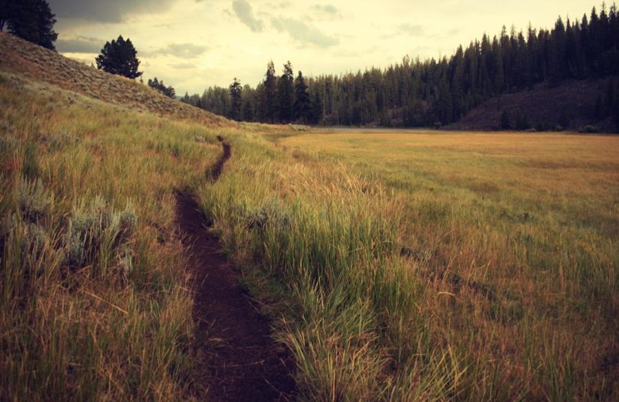 Chodźcie a zobaczcie – rekolekcje powołaniowe