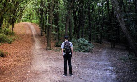 Pora wyboru  – warsztaty o podejmowaniu decyzji