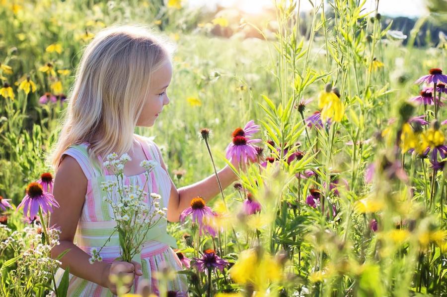 Natura – znakiem miłości Boga