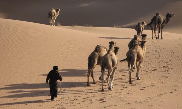 Wody Massa i Meriba (1) – dramat pustyni