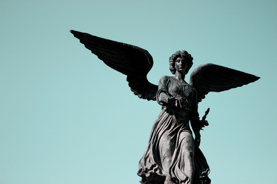 Anioł zarazy