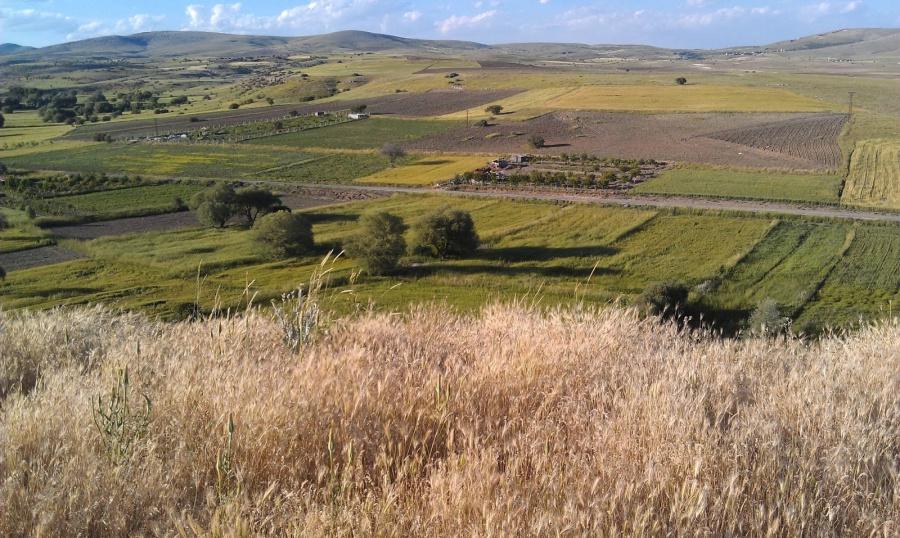 Na misyjnym szlaku ze świętym Pawłem (13) – uznani za bogów w Listrze